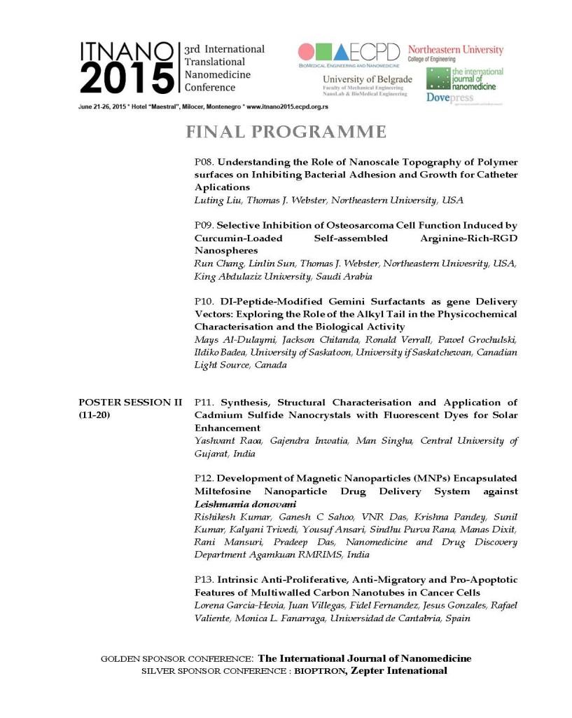 FINAL_PROGRAM_ITNano2015_Page_9